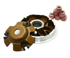 SSP-G PTFE Coated Variator Kit
