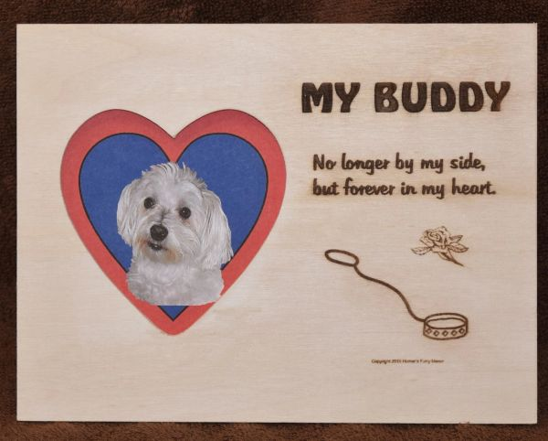 Loss of Dog - Empty Leash Engraved Plaque with Picture