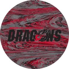 MSUM Dragons in Black Concrete 1 on Red Sandstone Car Coaster