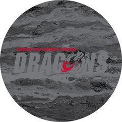 MSUM Dragons in Grey Concrete 2 on Black Sandstone Car Coaster