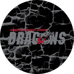 MSUM Dragons in Grey Cracks 3 on Black Sandstone Car Coaster