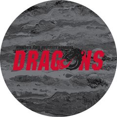 MSUM Dragons in Red Black Dragon Concrete 2 on Black Sandstone Car Coaster