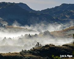 Fog In The Hills