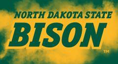 North Dakota State Bison Logo on Cloud background 3 Business Card Holder