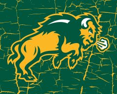 "8"" x 10"" NDSU Body Logo Cracks 1 Aluminum"