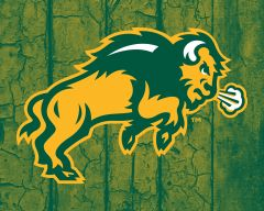 "8"" x 10"" NDSU Body Logo Wood 1 Aluminum"