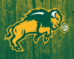 "8"" x 10"" NDSU Body Logo Wood 2 Aluminum"