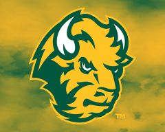 "8"" x 10"" NDSU Head Logo Clouds 1 Aluminum"