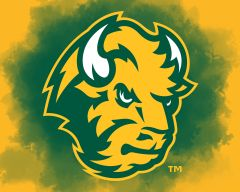 "8"" x 10"" NDSU Head Logo Clouds 2 Aluminum"