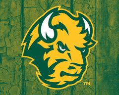 "8"" x 10"" NDSU Head Logo Wood 1 Aluminum"