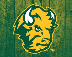 "8"" x 10"" NDSU Head Logo Wood 2 Aluminum"