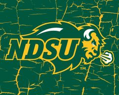 "8"" x 10"" NDSU Primary Logo Cracks 1 Aluminum"