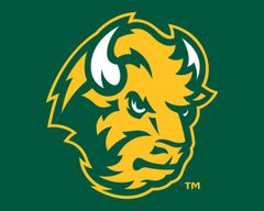 "8"" x 10"" NDSU Head Logo on Green Aluminum"