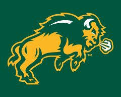 "8"" x 10"" NDSU Body Logo on Green Aluminum"