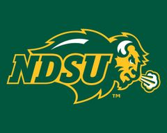 "8"" x 10"" NDSU Primary Logo on Green 1 Aluminum"