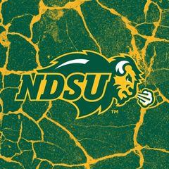 NDSU Primary Logo Cracks 2 Square Sandstone Coaster