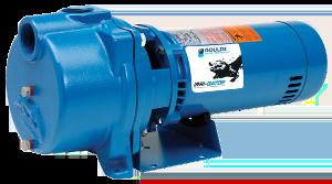 "GT20 2 HP Goulds ""Gator"" Irrigation Pump"