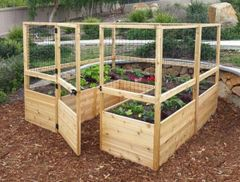 Self Contained School Allotment