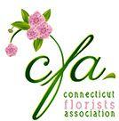 2020 CFA Member Dues