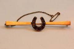 Gold and garnet stock pin