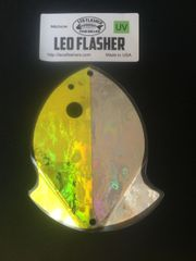Medium Leo Flasher Chartreuse Frost / Silver