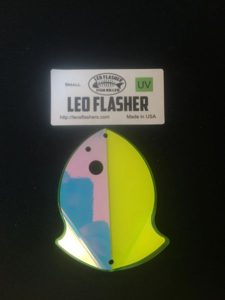 Small Leo Flasher Chartreuse Moon Jelly