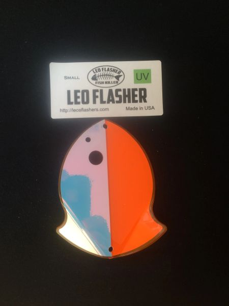 Small Leo Flasher Orange Moon Jelly