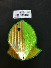 Large Leo Flasher 50/50 Gold SS Crush on Chart