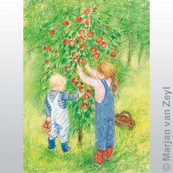 Apple Harvest 1 pc postcard