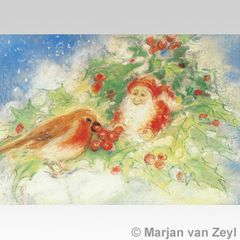 Winter Robin Postcard