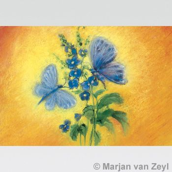 Blue Butterflies postcard