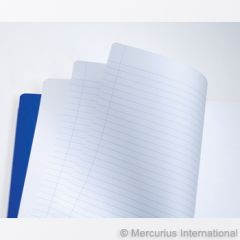 Main lesson book - 21x29.7 cm - 2 pages lined / 1 page blank - no onion skin 1 book