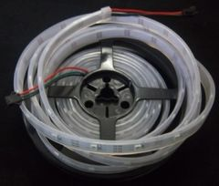 WS 2811 5m Ribbon (ccr) 12v