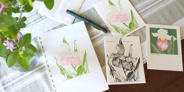 Showy Lady Slipper is among the many subjects featured on original design   note cards  by Cindy Kol