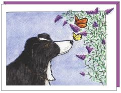 Zip and the Butterfly Boxed Note Cards