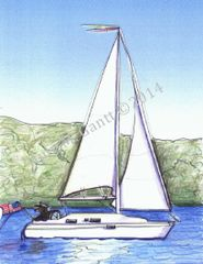 Sailboat With Dog Boxed Note Cards