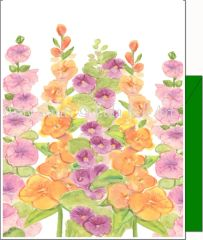 Hollyhocks Flowers - Boxed Note Cards