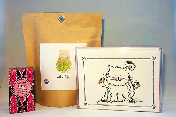 Spring Kitty, Cat Nip and Cat Soap Care Package Gift Set