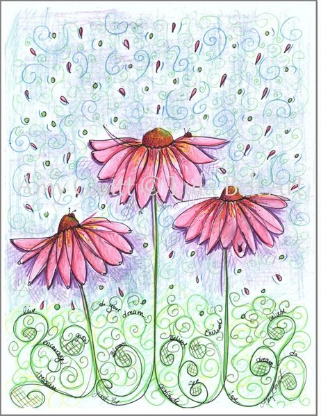 Pink Cosmo Flowers Boxed Note Cards