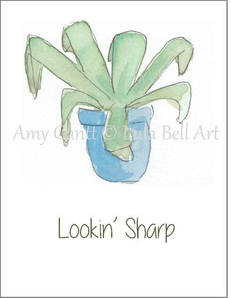 Succulent in Blue Bowl Note Cards
