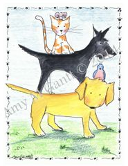 The Pets Boxed Note Cards