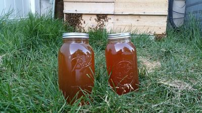 American Raw Honey LLC