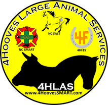 4Hooves Large Animal Services, LLC