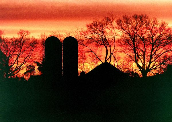 Silos in the Sunset