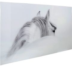 LIMITED STOCK-Beautiful Grey & White Horse picture with tempered glass 120x80cm