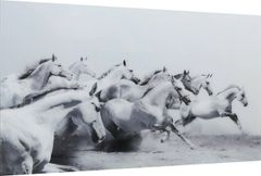 LIMITED STOCK-Beautiful Grey & White running Horses picture with tempered glass 120x80cm