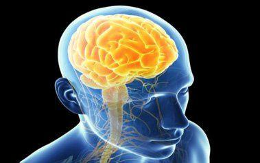 Brain-Based Hypnotherapy Basic Training