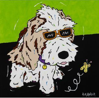 Curious Pup - Petit Basset Griffon Vendeen