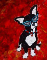 Me.....Little? - Chihuahua