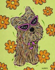Hip Little Diva - Yorkie Terrier